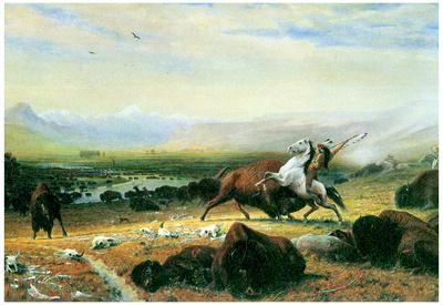 Albert Bierstadt The Last Buffalo Art Print Poster Posters