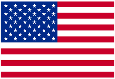 American Flag Poster Print Posters