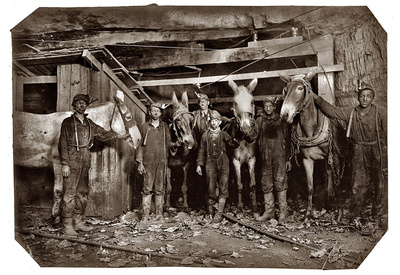 Mine Drivers and Trapper 1908 Archival Photo Poster Print Posters