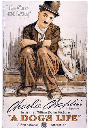 A Dog's Life Movie Charlie Chaplin Poster Print Prints