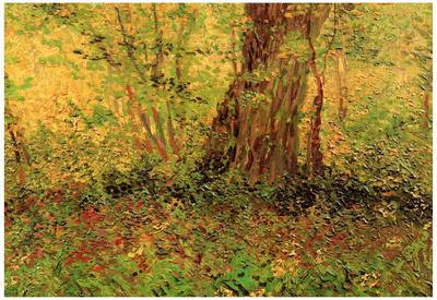 Vincent Van Gogh Undergrowth Art Print Poster Print