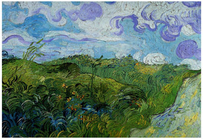 Vincent Van Gogh Green Wheat Fields Art Print Poster Prints