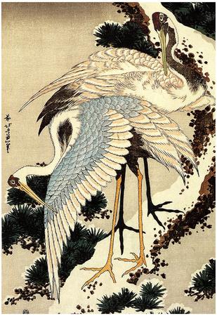 Katsushika Hokusai Two Cranes on a Pine Covered with Snow Art Poster Print Posters