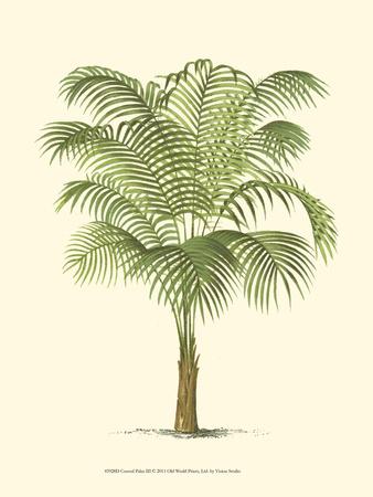 Coastal Palm III Impressão artística