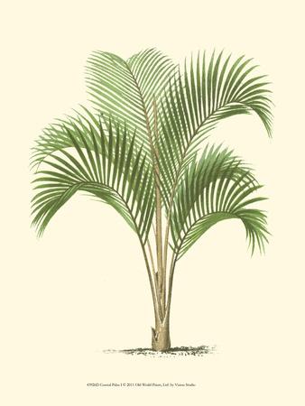 Coastal Palm I Posters