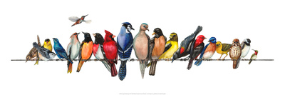 Large Bird Menagerie Posters by Wendy Russell