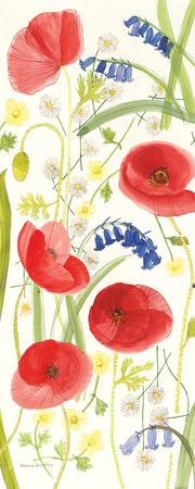 Meadow Poppies II Prints by Rebecca Bradley