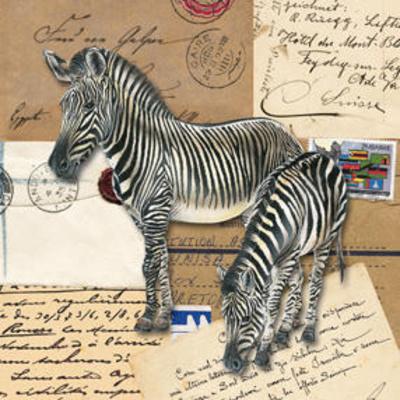 Africa Zebras Prints