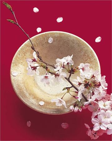 Japack Blooming Bowl Prints