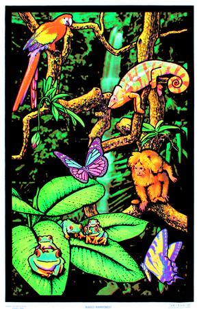 Rainforest Flocked Blacklight Poster Art Print Posters