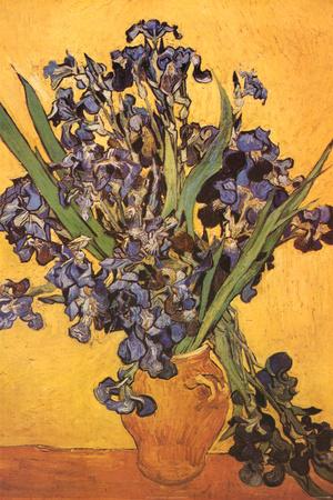 Vincent Van Gogh Les Iris Art Print Poster Photo