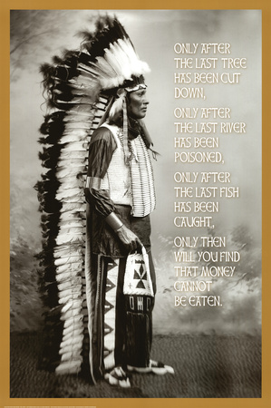Chief White Cloud (Native American Wisdom) Art Poster Print plakat