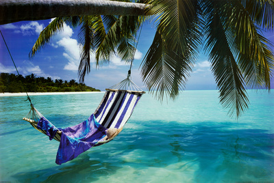 Tropical Beach (Hammock Under Tree, Huge) Art Poster Print Prints