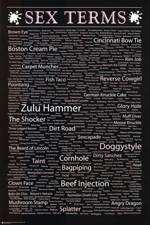Sex Terms List Art Print Poster Prints