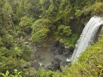 Zillie Falls, Atherton Tableland, Queensland, Australia, Pacific Lmina fotogrfica