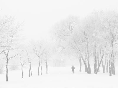 Winter, Saint Petersburg, Russia Photographic Print by Nadia Isakova