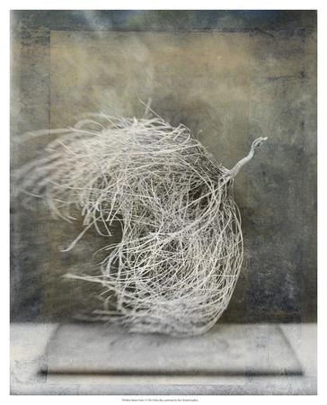 Desert Form I Poster by Elena Ray