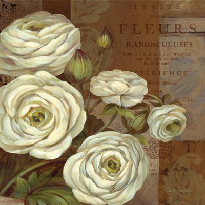 Patina Ranunculus Prints by Pamela Gladding