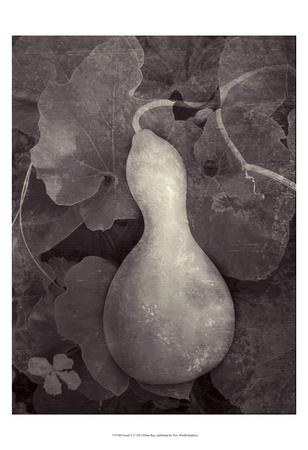 Gourd V Poster by Elena Ray