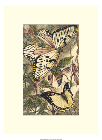 Dancing Butterfly II Giclee Print