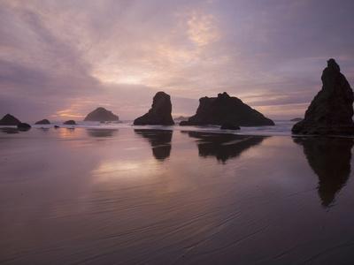 Sea Stacks Along the Oregon Coast Photographic Print by Sean Bagshaw