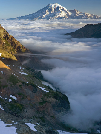 View of Mt. Rainier Above the Clouds from the Goat Rocks Wilderness, Washington, USA Photographic Print by David Cobb