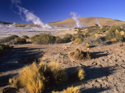 El Tatio Geysers Near San Pedro De Atacama, Chile Photographic Print by Gary Cook