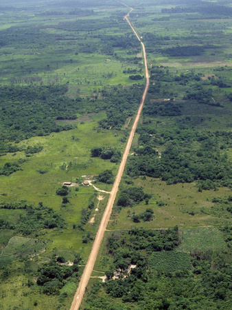 Aerial Image of a Road Through Former Rainforest Cleared for Agriculture and Cattle Raising Photographic Print by Jacques Janqoux