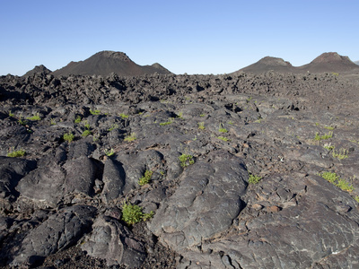 Cinder Cones and Pahoehoe Lava, Craters of the Moon National Monument, Idaho Photographic Print by Marli Miller