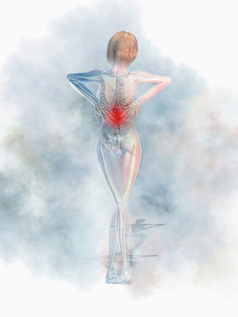 Woman Experiencing Back Pain Photographic Print by Carol & Mike Werner