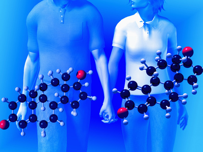 Estrogen and Testosterone Hormones HowStuffWorks