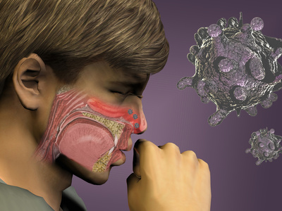 Artist's Concept of the Rhinovirus Which Causes the Common Cold Photographic Print by Carol & Mike Werner