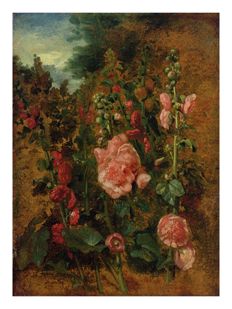 Study of Hollyhocks, C.1826 (Oil on Board) Premium Giclee Print by John Constable