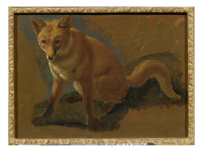 Study of a Fox (Oil on Panel) Premium Giclee Print by Jacques-Laurent Agasse