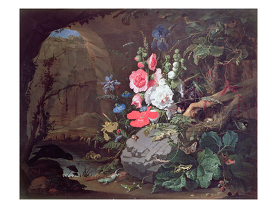 Flowers and Birds in a Cave Premium Giclee Print by Abraham Mignon