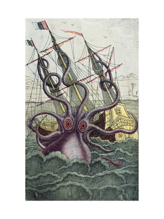 Giant Octopus, Illustration from 'L'Histoire Naturelle Generale Et Particuliere Des Mollusques' Premium Giclee Print by  French
