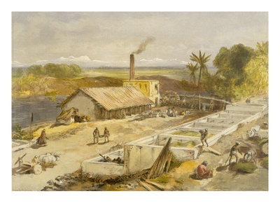 Indigo Factory - Bengal, from 'India Ancient and Modern', 1867 (Colour Litho) Premium Giclée-tryk af William 'Crimea' Simpson