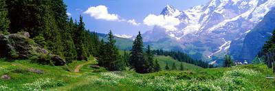 Alpine Scene Near Murren Switzerland Photographic Print by  Panoramic Images