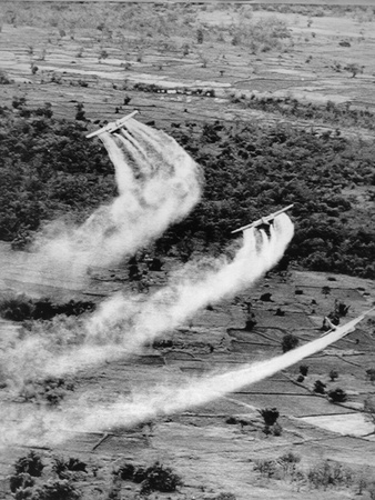 Vietnam War Agent Orange Photographic Print by  Associated Press