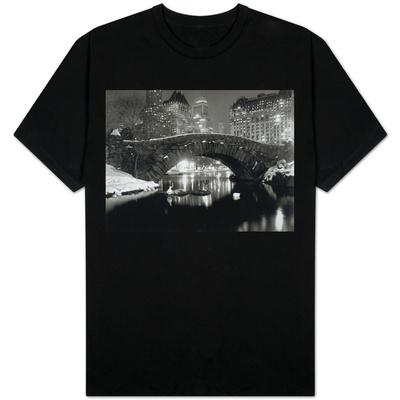 New York Pond in Winter T-Shirt
