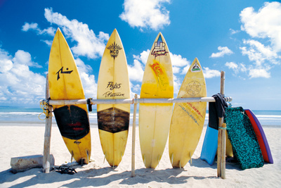 Suns Sea and Surf beach surfboards outdoor summer scenes photo