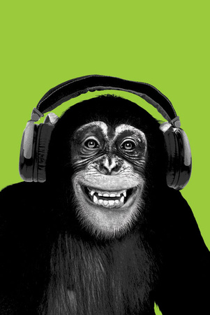 Chimpanzee-Headphones Posters