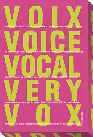 Vox V3 Stretched Canvas Print