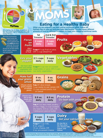 MyPlate for Expecting Moms poster Prints