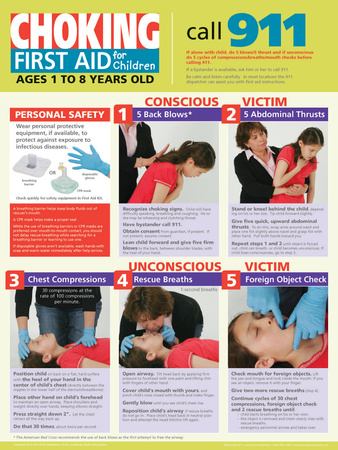 Children's Choking Poster Print