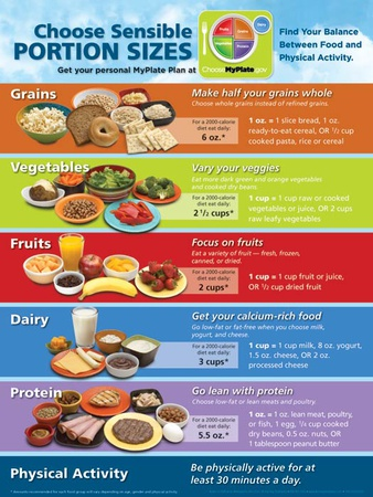 MyPlate Portion Size Poster Prints