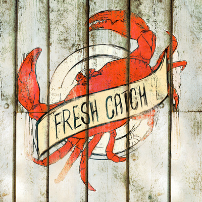 Fresh Catch Square Posters