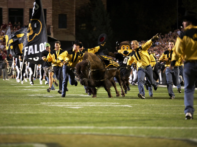 University of Colorado - Running with the Buffaloes Foto af Tim Benko