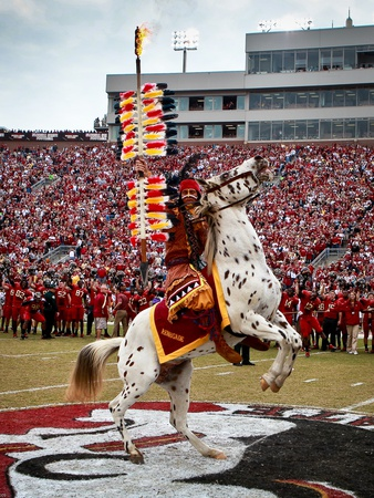 Florida State University - Renegade and Chief Osceola on the Field Foto av Ross Obley