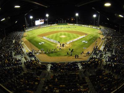Louisiana State University - Line Up in Alex Box Stadium Photo